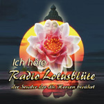 Radio Lotusblüte